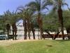 dalia-hotel-eilat-002
