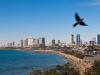 Tel Avivské pláže a hotely.